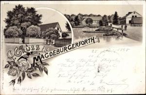 Litho Magdeburgerforth Möckern im Jerichower Land, Partie am Wasser, Rosen