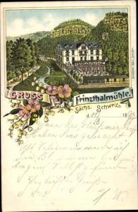 Litho Porschdorf Bad Schandau Sächsische Schweiz, Frinzthalmühle