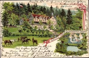Ak Silberborn bei Bad Harzburg im Harz, Partie im Wald, Pferde