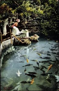 Ak Bermuda, Devil's Hole, Frau betrachtet Fische im teich