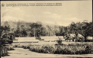 Ak Maiumbe DR Kongo Zaire, Algemeen gezicht van de inrichtingen Urselia, Beplanting van Cacaoboomen