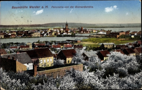 Ak Werder an der Havel, Baumblüte, Panorama, Bismarckshöhe 0
