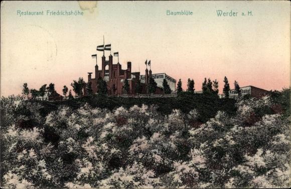 Ak Werder an der Havel, Baumblüte, Restaurant Friedrichshöhe 0