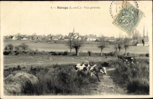 Ak Soings en Sologne Loir et Cher, Vue generale, Rind