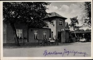 Ak Dommitzsch Elbe Nordsachsen Sachsen, Gasthaus Vogelsang