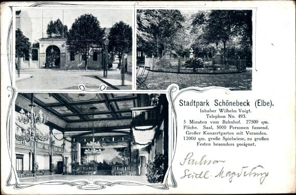 Ak Schönebeck an der Elbe, Stadtpark mit Saal und Konzertgarten 0