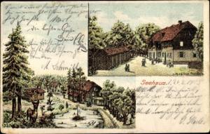 Künstler Ak Seehausen in der Altmark, Partie im Wald