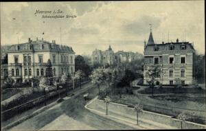 Ak Meerane in Sachsen, Schwanefelder Straße