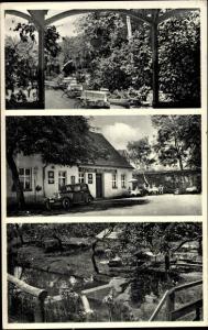 Ak Dommitzsch Elbe Nordsachsen Sachsen, Gasthaus Vogelgesang