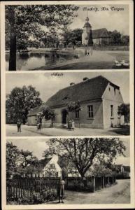 Ak Mockritz Elsnig Sachsen, Schule, Gartenpartie