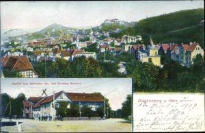 Ak Blankenburg am Harz, Gasthof zum schwarzen Bär, Panorama