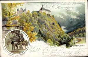 Künstler Litho Kretschmar, O., Schwarzburg in Thüringen, Burg, Waldpartie, Hirsch