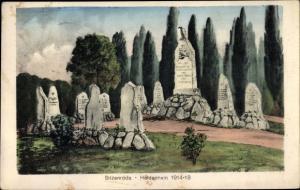 Ak Sitzenroda Belgern Schildau in Nordsachsen, Heldenhain 1914 1918, Gräber