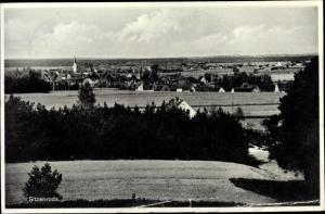 Ak Sitzenroda Belgern Schildau in Nordsachsen, Panorama