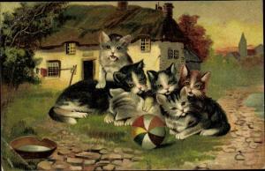 Litho Kleine Katzen mit Ball, Hoffman's Stärkefabriken Salzuflen