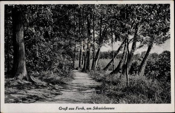 Ak Ferch am Schwielowsee, Waldpartie 0