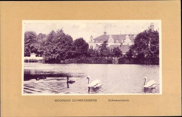 Ak Bad Schmiedeberg in der Dübener Heide, Schwanenteich 0