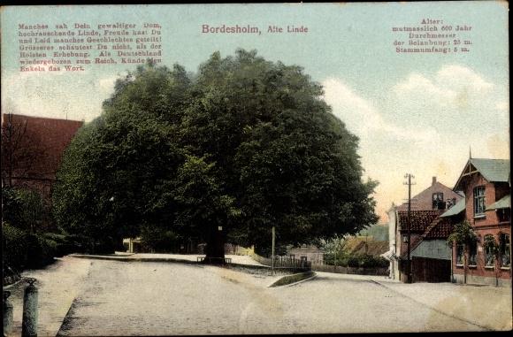 Ak Bordesholm Schleswig Holstein, Alte Linde, Gedicht 0