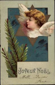 Litho Glückwunsch Weihnachten, Engel, Stern, Tannenzweig