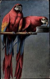 Künstler Ak Schönian, Alfred, Papageien, Aras auf einer Stange