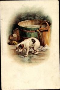 Künstler Ak Nasser Hund nach dem Bad, Waschzuber, Tuck