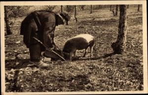Ak Trüffelschwein mit Besitzer, Perigord, Portrait