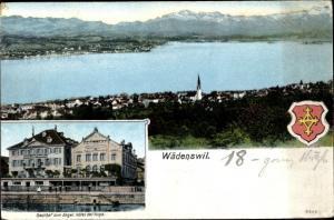 Ak Wädenswil Kanton Zürich, Gasthof zum Engel, Panorama