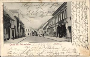 Ak Wanzleben Börde in Sachsen Anhalt, Schulstraße, Straßenpartie