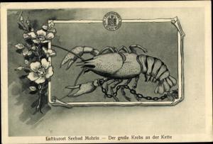 Ak Mohrin Moryń Ostbrandenburg, Der große Krebs an der Kette