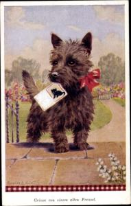 Künstler Ak Valter, F. E., Hund mit Postkarte im Maul, Katze, Grüße von einem alten Freund