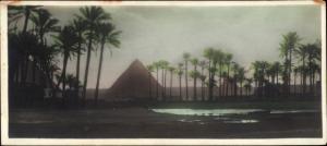 Ak Cairo Kairo Ägypten, Pyramiden, Palmen