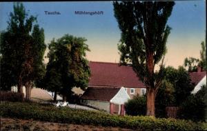 Ak Taucha in Nordsachsen, Mühlengehöft