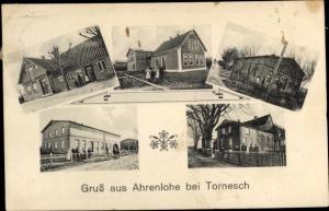 Ak Ahrenslohe Tornesch in Schleswig Holstein, Wohnhäser, Gartenpartien