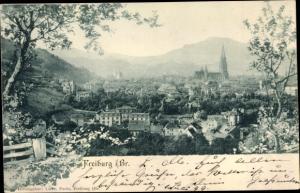 Ak Freiburg im Breisgau, Panorama