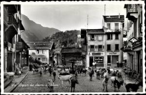 Ak Salvan Wallis Schweiz, Départ des Chèvres sur la Place du Village