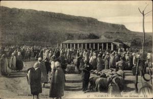 Ak Tlemcen Algerien, Marché aux bestiaux
