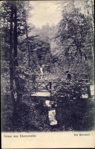 Ak Eberswalde im Kreis Barnim, Der Hertafall