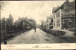 Ak Apeldoorn Gelderland, Daendelweg