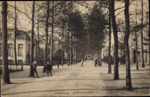 Ak Apeldoorn Gelderland, Paschlaan