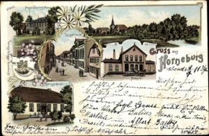 Litho Horneburg Niederelbe, Langestraße, Totale, Molkerei, Rittergut Renzel, Mayor v. Düring Haus