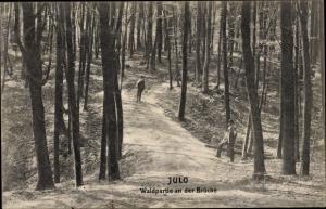 Ak Julo bei Gotzlow Goclaw Pommern, Waldpartie an der Brücke