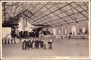 Ak Victoria Viktoria Kamerun, Westafrikanische Pflanzungsgesellschaft, Trockenhalle