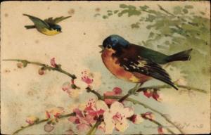 Künstler Ak Bunter Vogel auf einem Blütenzweig