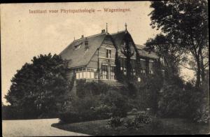 Ak Wageningen Gelderland Niederlande, Instituut voor Phytopathologie