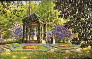 Künstler Ak Starcke, Rich., Gartenpartie, Kastanienbaum, Blütenbeete
