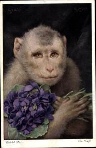Künstler Ak Max, Gabriel, Ein Gruß, Affe mit Blumenstrauß