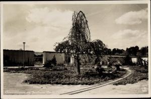 Ak Berlin Westend, Sommerblumen am Funkturm Berlin 1935