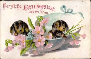 Ak Glückwunsch Ostern, Dackel schlüpfen aus Osterei, Blumen