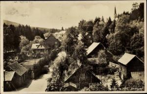 Ak Schierke Wernigerode am Harz, Dorfidyll