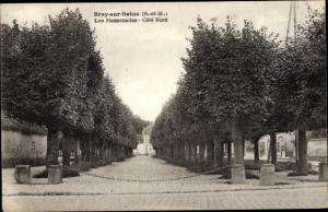 Ak Bray sur Seine Seine et Marne, Les Promenades